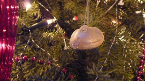 Liz Fenwick shares a Dubai Christmas Tree