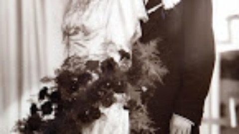Kate Thompson: The Wedding Girls
