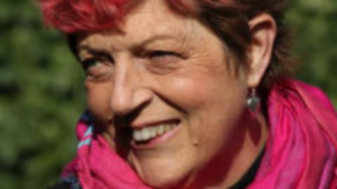 Joan Hessayon Award contenders 2018: Sue McDonagh